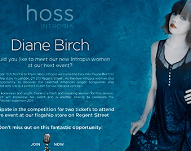 HOSS INTROPIA & DIANE BIRCH